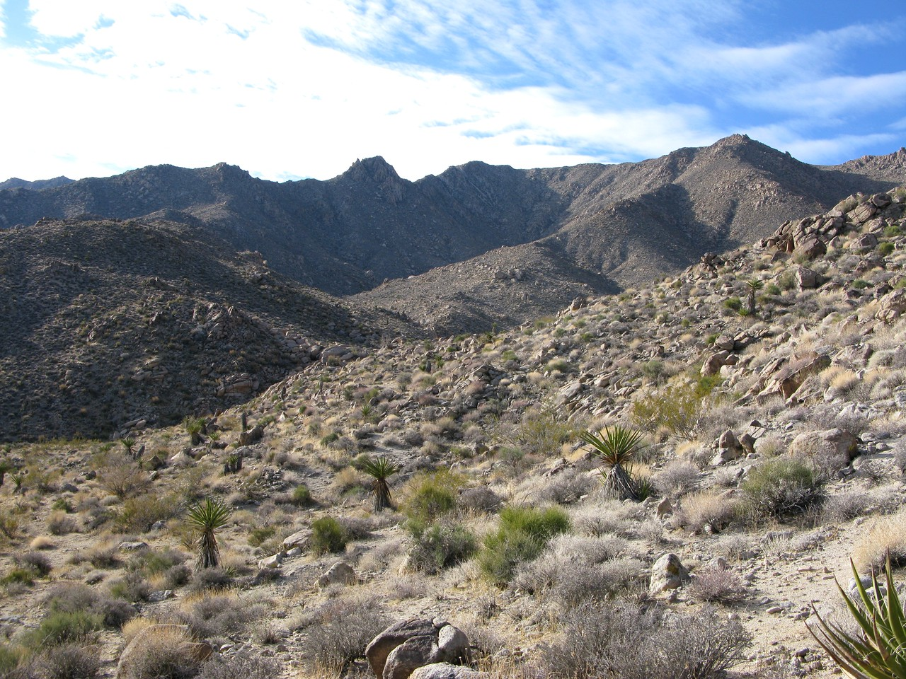 From the distance I could see that the easy sloping terrain would soon give way to rocky gulleys and dry washes.