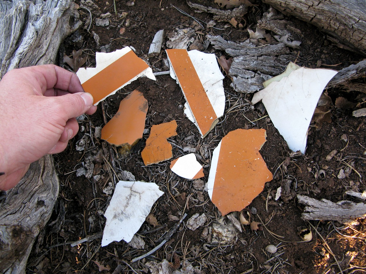 These small plastic fragments give me an idea of the paint color and scheme of the aircraft. They also look very similar to an un-identified pile of burned aircraft debris located about four miles away at Ten-X Meadow. <br /> <br /> I decided to remove a few of these pieces from the crash site to see if the paint matches the fragments in the Ten-X Meadow debris pile.