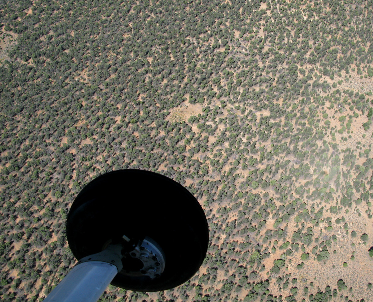 This aerial view of the accident site shows how the site's location was concealed by the surrounding forest.