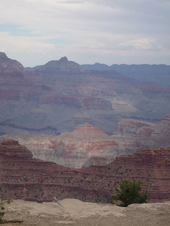 Grand Canyon Faves