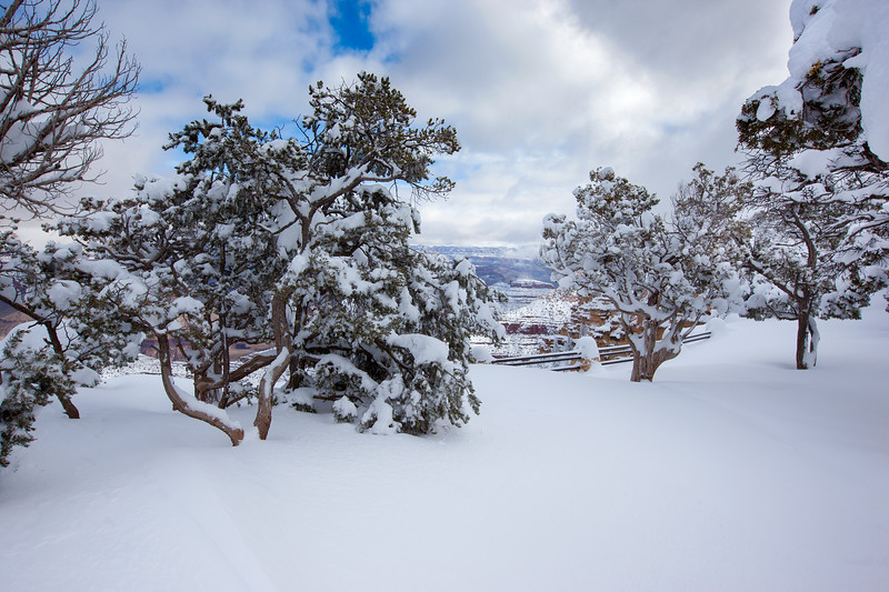 """Deep Powder at the Grand Canyon"""