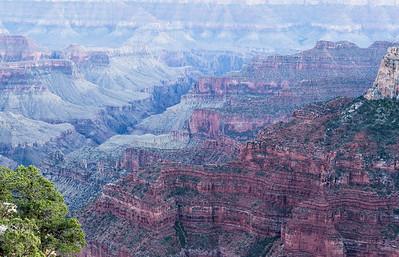 Grand Canyon North Rim August 2014 -17