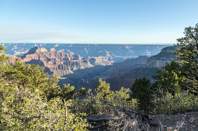 Grand Canyon North Rim August 2014 -11