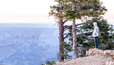 Grand Canyon North Rim August 2014 -24