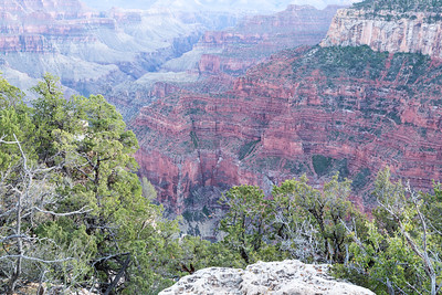 Grand Canyon North Rim August 2014 -20