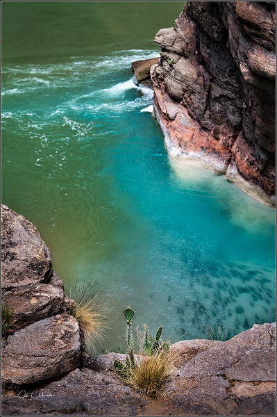 Confluence of Havasu Creek (Blue) and the Colorado River (Green). The black spots are fish.