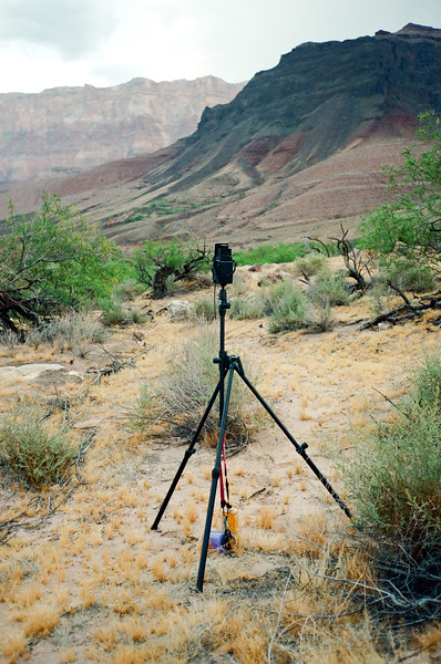 My Yashica twin lens with Benbo trekker  tripod in position.
