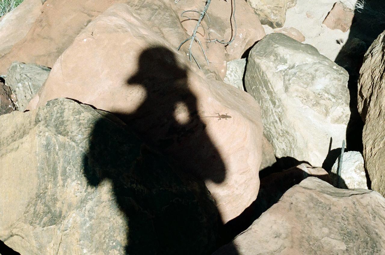 Myself hunting the elusive lizard.