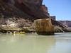 Grand Canyon '10 175
