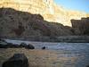 Grand Canyon '10 169