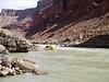 Grand Canyon '10 188