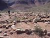 Grand Canyon '10 026