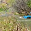 Verde River Institute Float Trip, Tapco to Tuzi, 3/25/17