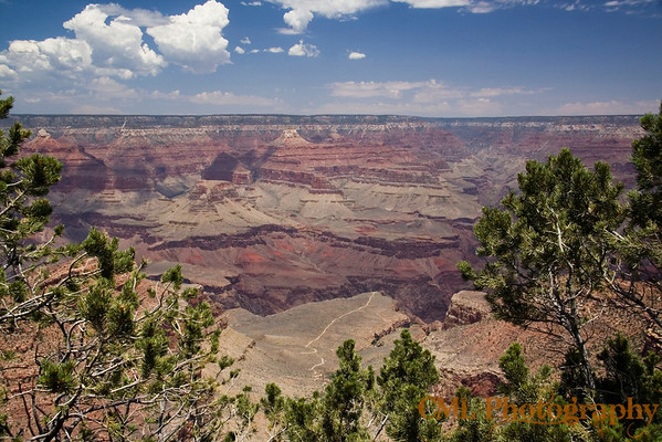 View of the Canyon from in front of Bright Angel Lodge.