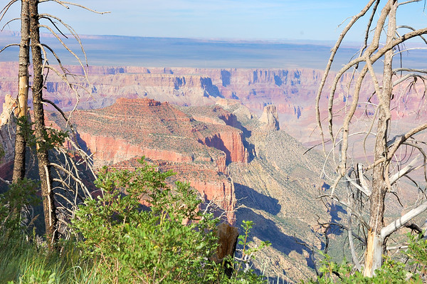 Grand Canyon Roosevelt Trail