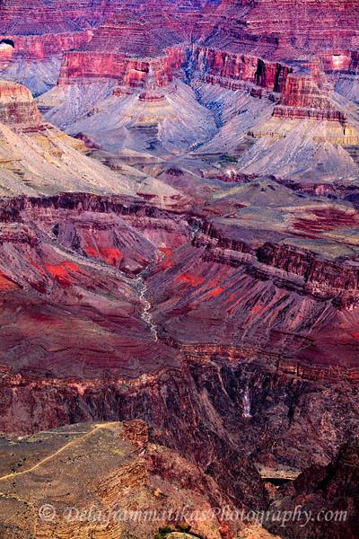 20121113_Grand Canyon-SR_7609