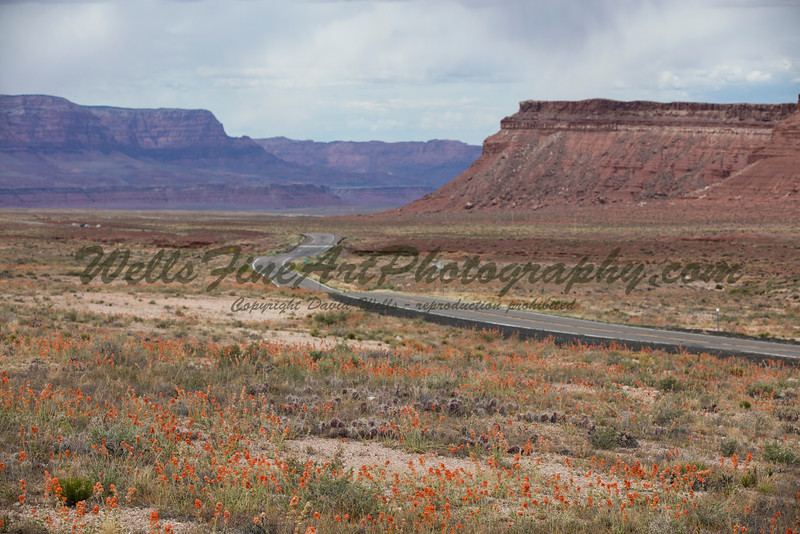 Road to Marble Canyon