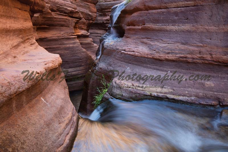 """Beside the creek below Deer Creek """"Patio"""""""