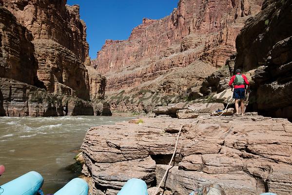 """Newty"" tying up the boat below Havasu Creek rapids."