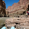 """Newty"" tying up the boat below Havasu Creek rapids."
