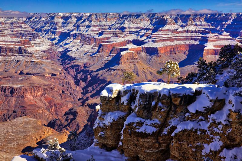 8770 Grand Canyon