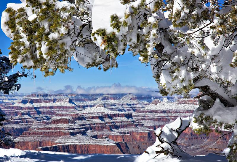8962 Grand Canyon