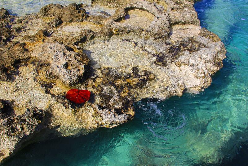 Grand Cayman Island