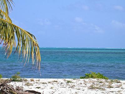 Grand Cayman, February 2004 265