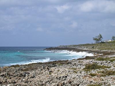 Grand Cayman, February 2004 089