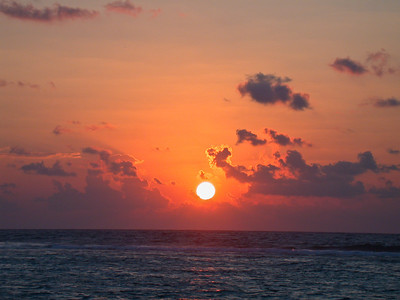 Grand Cayman, February 2004 659