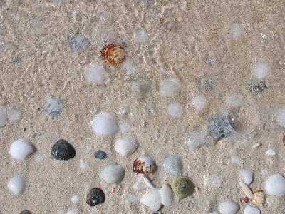 Grand Cayman, February 2004 282