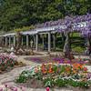Italian Garden - Spring