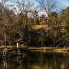 Maymont, balmy January day (high 74); Japanese Garden pond & pagoda from S side of pond, with Dooley mansion on hill beyond, largely masked by trees; late afternoon sun