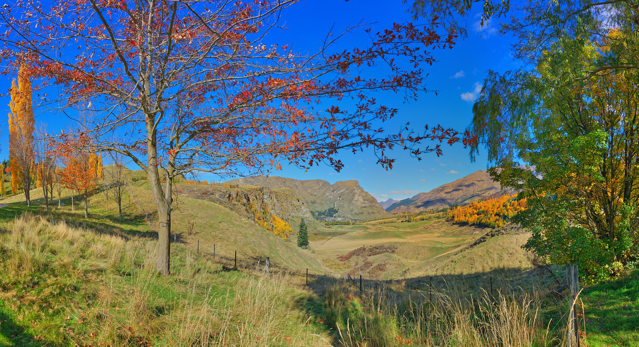 Malaghans Road Vista, Queenstown, South Island, New Zealand
