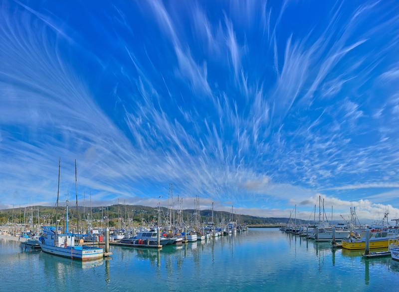 Sky Plume, Pillar Point Harbor, Half Moon Bay, CA