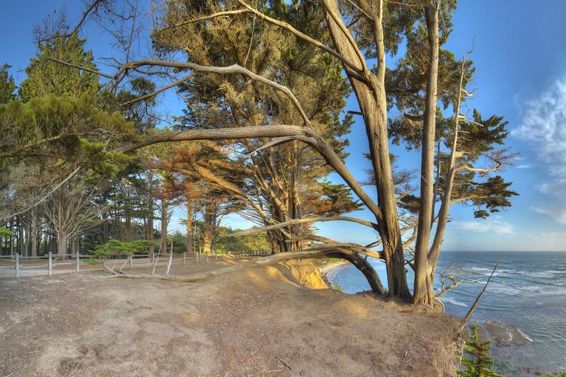 Cypress Bluffs, Moss Beach, CA