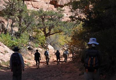 Wilderness Volunteers: 2017 Grand Gulch-Cedar Mesa Plateau Service Trip