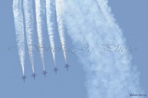 Blue Angels 2005