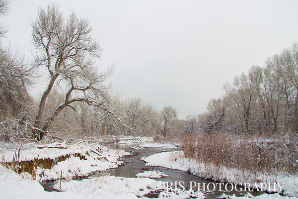 Wintry Day on the Platte