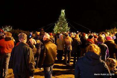 Lighting of the Christmas Tree.
