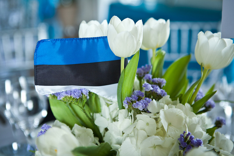 Blue flowers become hard to find when you are trying to match them to a flag!