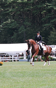 Sue Jaccoma - GP Dressage rider on Wadamur, rides a demo between the Speed Stake and the GP