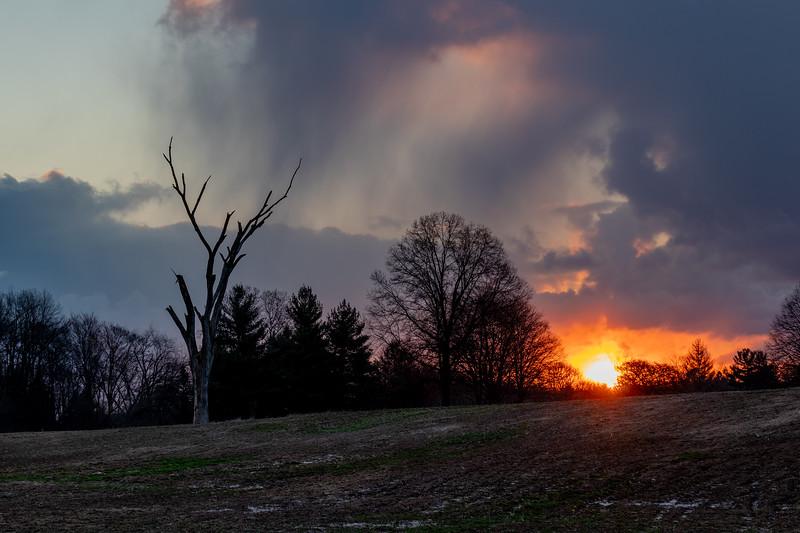 Sunrise at Blandford Nature Center I