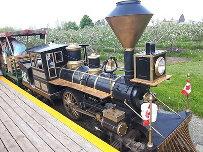 Irene Cook - The train at Puddicombe Farm