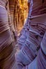 """Zebra Slot Canyon Downstream View"""
