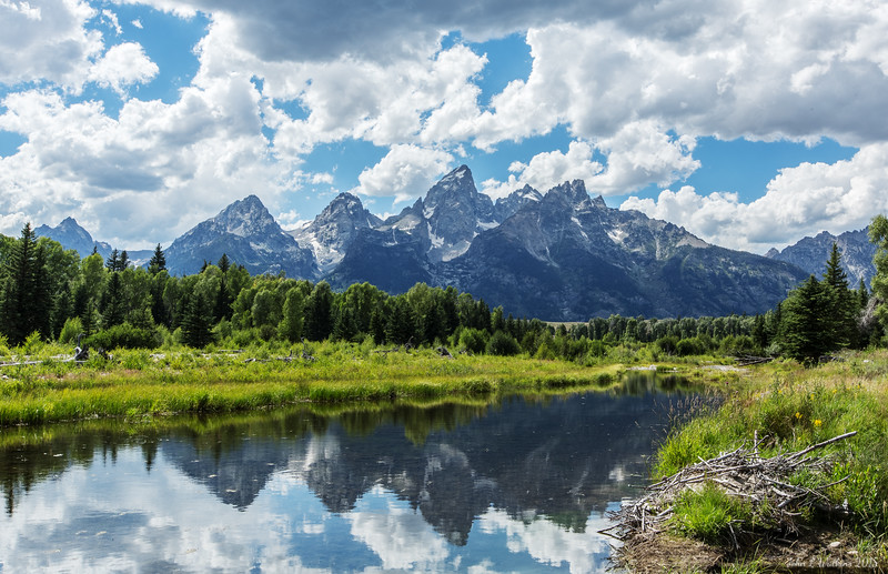Teton Reflections at Schwabacher's Landing
