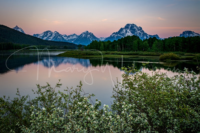 Oxbow Bend Dawn