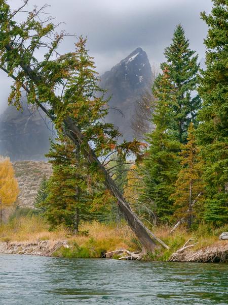 Tetons - Snake River