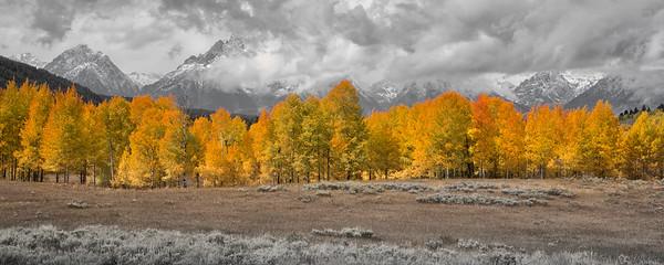 Oxbow Bend, Grant Teton National Park