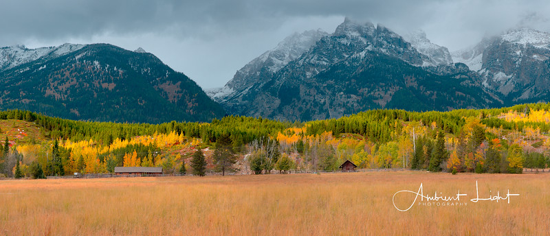 Along the Teton Park Road